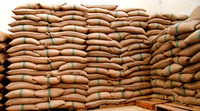High Quality Robusta Coffee Beans Good Price