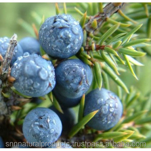 Pure & Natural Juniper Berry Oil