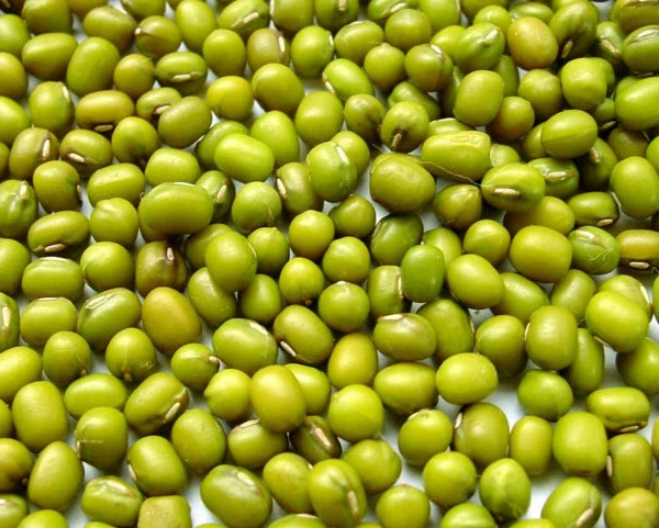 Grade A green mung bean for food moong dal price
