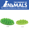 The Company of Animal Green Slow Dog Feeder