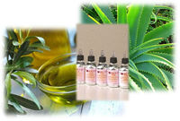 Italian cosmetic brands: aloe vera based fresh herbal products for skin care
