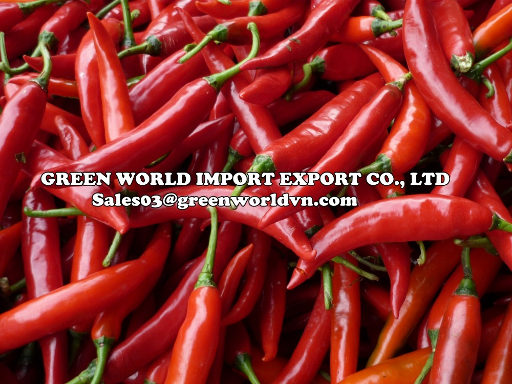 Red Chilli, fresh/frozen/dried with high quality and attractive price from Vietnam