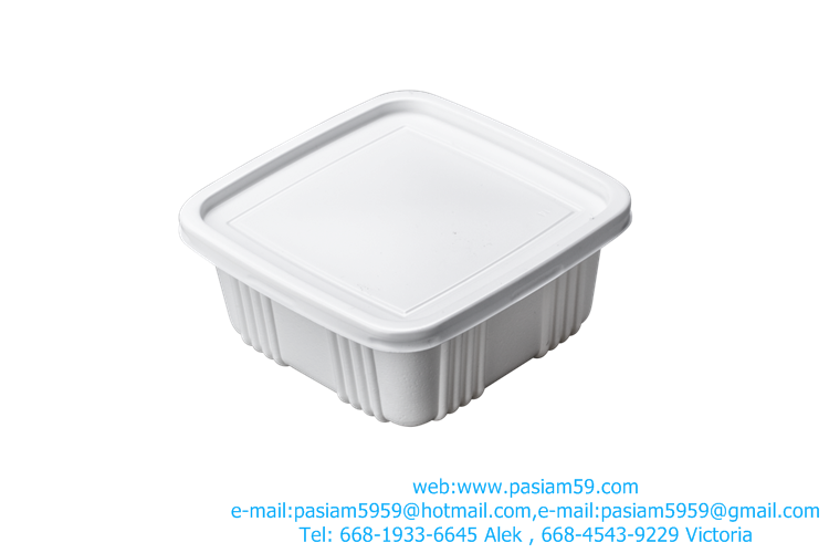 plastic Rice Squa, size 9.8*12.5*4.4 cm, white, food, more.or Custom Molded Plastics, Plastic Injection Molding-Custom Molds,Th
