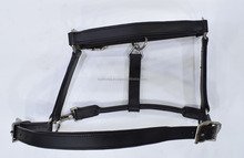 padded leather halter/premium quality/with available customization