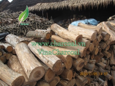 Eucalyptus charcoal for BBQ from Vietnam with low ash, high heat value and attractive quotation