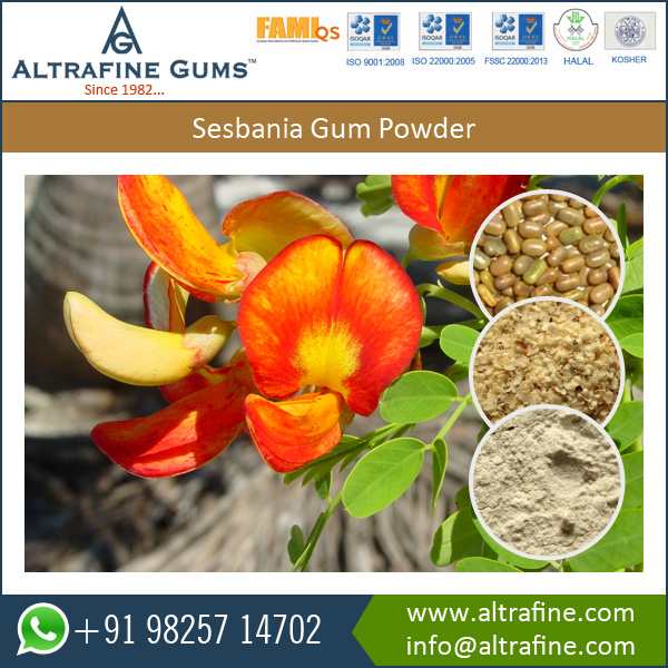Sesbania Seeds Extract Powder for Food Industry