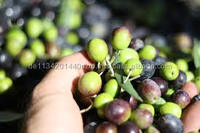 fresh olives on sale