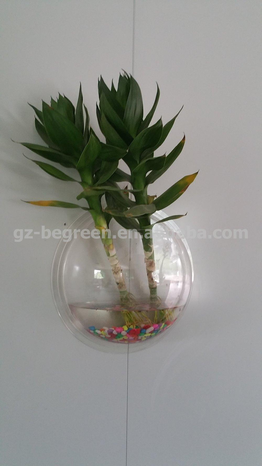 Freesky new unique plastic decoretive fish bowls buy for Cool fish bowls