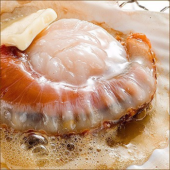 High quality and Delicious scallops , japanese seafood companies