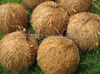 Fresh Coconut exporters to South Korea