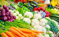 fresh vegetables from india/fresh vegetables exporters