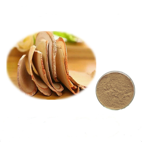 Honson Ingredient: Herbal Extract Salicin White Willow Bark P.E.