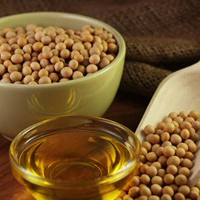 (EUR 1 & T2L certified) Refined Organic Soybean Oil & Soya oil for cooking/Refined Soyabean Oil
