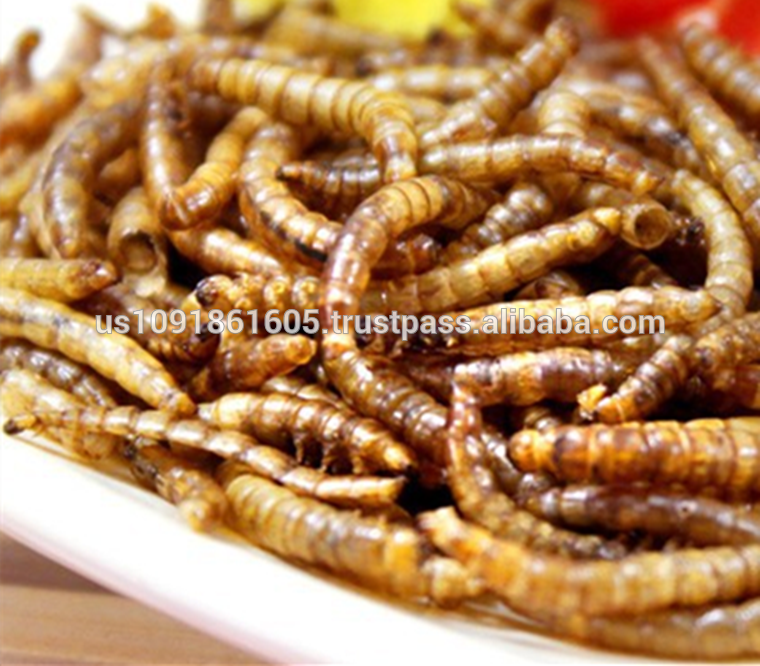 Wholesale dried mealworms bird feed chicken reptile food