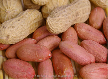 Wholesale Long Raw Peanut Price importers In UAE Peanuts 1kg Price