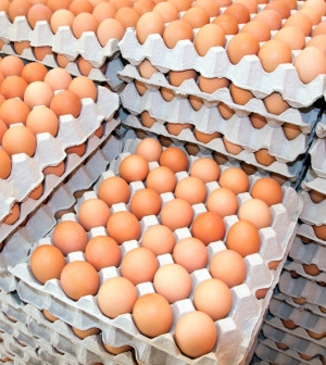 Fresh brown table eggs (M size 53-63 gms)