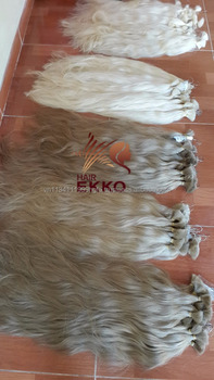 April 2016 100% human remy hair color white and cold color russian hair in bulk Long straight blonde hair