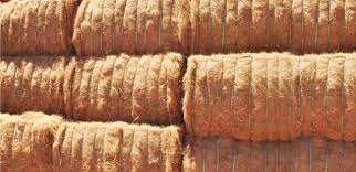 Coconut Coir Fiber Price in Sri