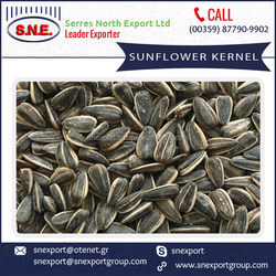 Organic Sunflower Kernel with Longer Shelf Life at Market Rate