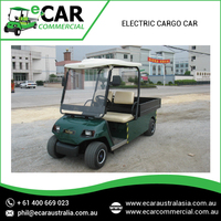 Electric Utility Cart Electric Golf Carts & Electric Golf Cart Car Buggy for Sale