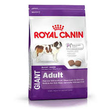 Royal Canin Giant Adult dog food for giant breeds (over 45kg)