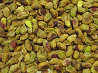 Top Quality Inshell 100% Natural Jumbo Pistachio