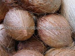 Fresh Coconuts For UAE, Saudi, Kuwait and Singapore.