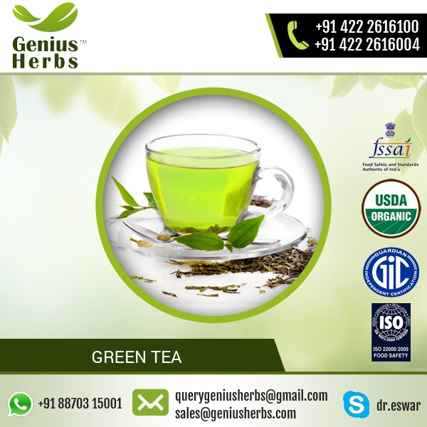 Digestion Improving Green Tea Powder for Weight Loss