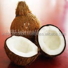 High Graded coconut suppliers to Oman