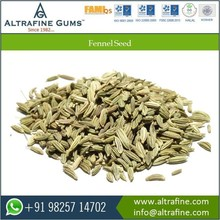 Best Quality And Branded Fennel Seed From India