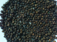 Seasoning and Condiment Black Pepper Wholesale