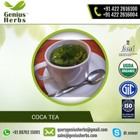 Organic Quality Coca tea for Weight Loss at Considerable Price