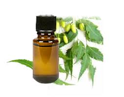 High Quality Pure Organic Neem Oil At lowest price