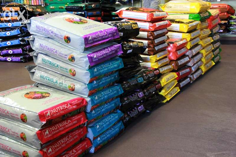 Pet Food Type and Eco-Friendly Feature dog food