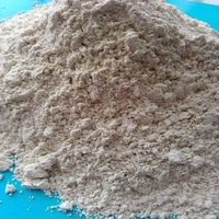 Grade A Quality Garlic powder animal feed