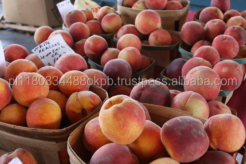 Fresh Peach / Nectarine / SALES