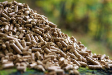 High Quality Wood Pellet (100% natural wood)