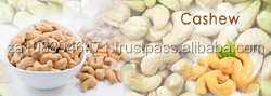 Raw And Roasted Cashew Nuts Grade A for sale In bulk