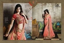 Saree on net skirt with heavy embroidery & stone work & georgette pallu with beautiful embroidery work in net blouse.