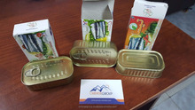 Canned Style and KOSHER,HACCP,ISO,HALAL Certification canned sardine from MOROCCO