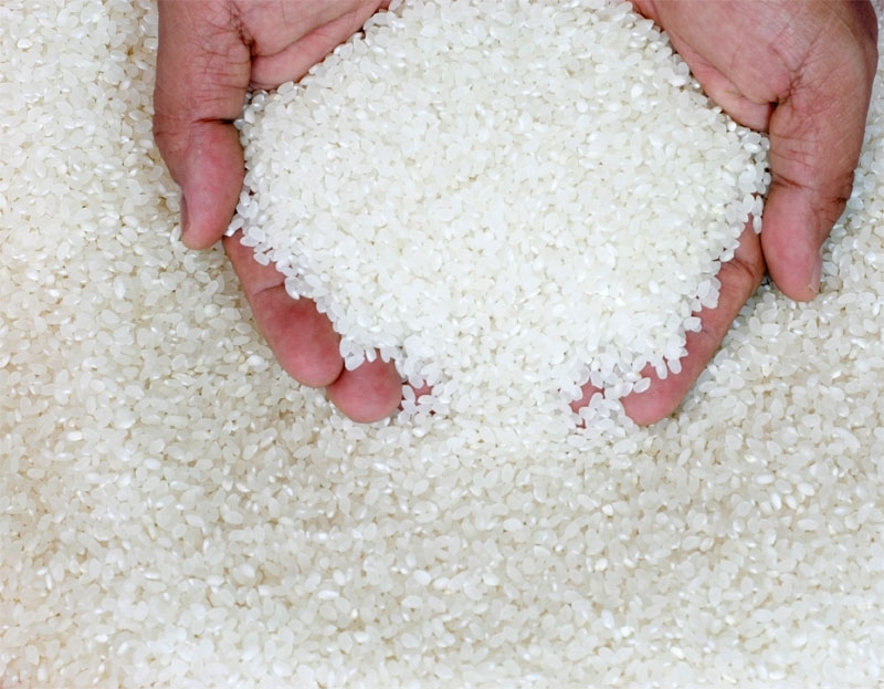YES!!! BEST QUALITY RICE EVER!!! WE HAVE Long, Medium, Short Grain / Jasmine / Parboiled / Fragrant / Thai White Rice 100%