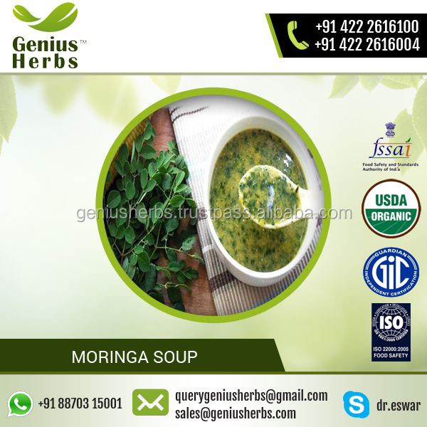 ISO Certified Green Color Moringa Soup for Bulk Sale at Competitive Price