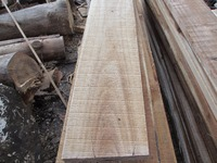 Vietnam Acacia wood sawn timber competitive price and medium quality
