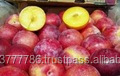 QUALITY Fresh plums for sale