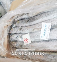 Finding/buyers of frozen ribbon fish contact serious importers only