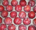 FRESH Red Plums from South Africa