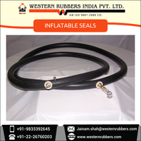 High Quality Rubber Inflatable Seals
