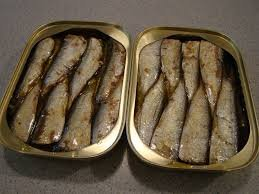 canned sardine in sunflower oil