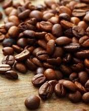 High Quality Robusta / Green / Roasted / Fresh / Arabica Coffee Beans
