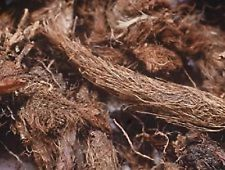 Musk Root-Indian Spikenard-Nardostachys Jatamansi-Roots Raw Herbs
